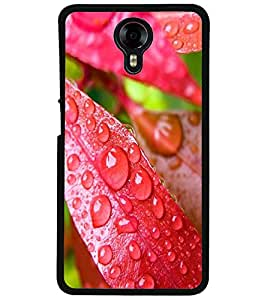 ColourCraft Water Drops on Leaf Design Back Case Cover for MICROMAX CANVAS XPRESS 2 E313