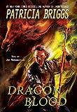 Dragon Blood - Hurog Series Book 2