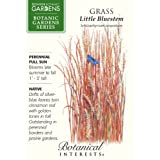 Grass Little Bluestem Seeds Botanic Gardens Series 110 Seeds