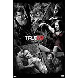 True Blood Shattered Mirror Poster Print
