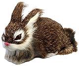 PIGLOO Rabbit Home Decoration Showpiece