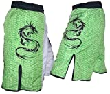 Mixed Martial Arts Shorts w/ Dragon and Green Scales – Medium