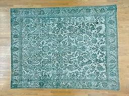 10\'x12\' Light Green Overdyed Persian Tabriz Barjasta Hand Knotted Rug G25110