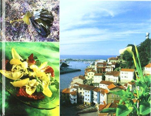 El alga palmaria en la gastronomía : el alga de Cudillero
