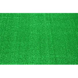 Dean Indoor/Outdoor Carpet Green Artificial Grass Turf Area Rug 8' x 10'
