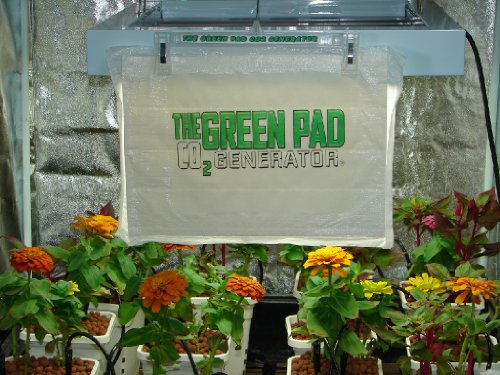 51mcRot577L. SL500  Green Pad Co2 Generator, 5 Pack