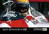 アイルトン・セナ卓上 F1カレンダー 2013(A.Senna) 「つみき」Photo by 金子博