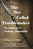 img - for The Boy Called Troublemaker: Based on the Childhood of Nelson Mandela book / textbook / text book