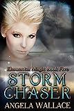 Storm Chaser (Elemental Magic Book 5)