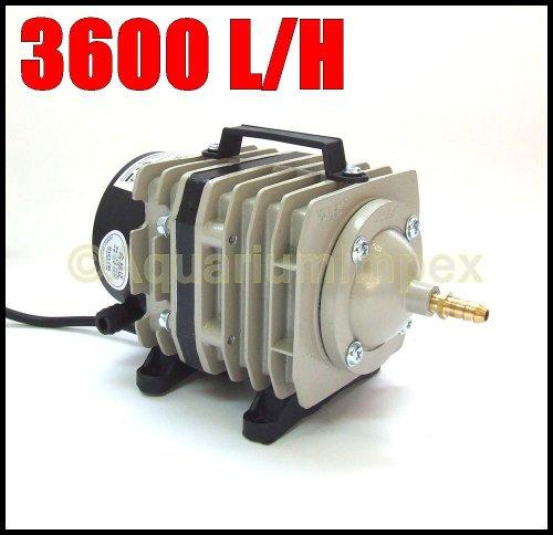AquaForte-LuftpumpeKolbenkompressor-Hailea-Aco-318-60lmin