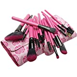 CICI&SISI 20 PCS Hot Pink Rosy Makeup Brush Set Nicely Packaged Cosmetic Brush Kit
