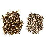 """Gr�ner Jasmintee - Oriental Jasmine Pearls 50gvon """"lea's tea"""""""