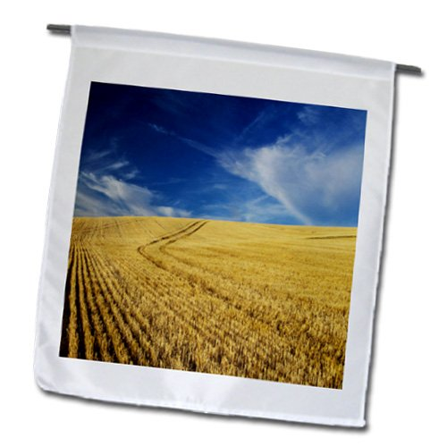 Danita Delimont - Farms - Farm Fields, Harvest Wheat, Palouse, Washington, USA - US48 TEG0425 - Terry Eggers - 12 x 18 inch Garden Flag (fl_148727_1)