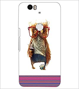 PrintDhaba Owl D-3316 Back Case Cover for HUAWEI NEXUS 6P (Multi-Coloured)