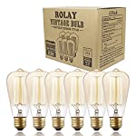 Edison Bulbs, Rolay 60w Dimmable Industrial Pendant Filament Light Bulbs with Vintage Antique Style Design for Pendant Lighting, Wall Sconces, Ceiling Fan and Chandeliers - 370 Lumens - 6 Pack