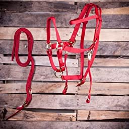 Bridle & Halter Combo with Reins 5 Colors NEW : Red