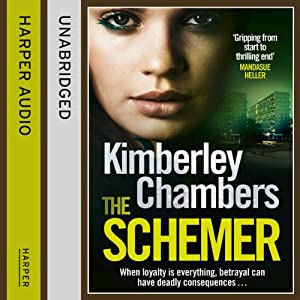 The Schemer Audiobook