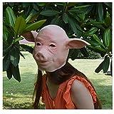 Máscara de cabeza en forma de porcina, cosplay de animales, una buena opción para fiesta de Halloween o otras fiestas
