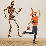 Beistle 00130 Jointed Skeleton Figurine, 6-Feet