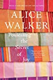 Image of Possessing the Secret of Joy: A Novel