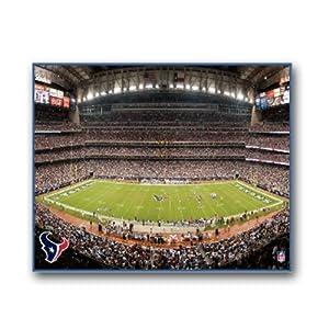NFL Houston Texans Stadium 22x28 Canvas Art by Pangea Brands