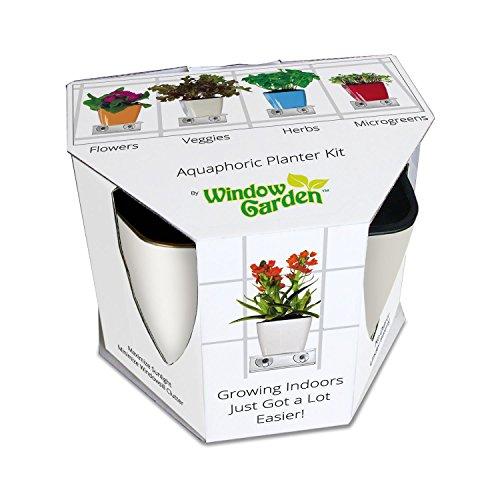 Aquaphoric Indoor Garden Kit