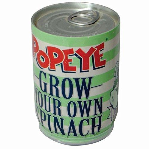 popeye-spinat-blechdose-mit-erde-und-spinatsamen-seemann-mit-erde-und-spinatsamen