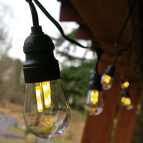 Commercial Led Filament Edison String Lights, 10 Amber Bulbs, Black