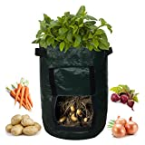 Garden Planter Bag (2-pack) - Grow Vegetables: Potato, Carrot, & Onion - Plant Tub with Access Flap for Harvesting - Eco-Friendly - Heavy Duty & Durable