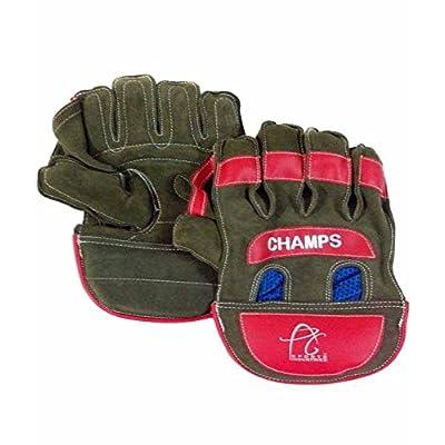 APG Practice Wicket Keeping Gloves (Multicolour)