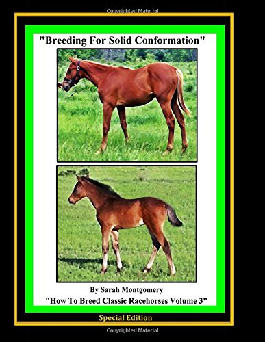 Breeding For Solid Conformation: Volume 3 (How to Breed Classic Racehorses)