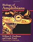img - for Biology of Amphibians by Duellman, William E., Trueb, Linda (1994) Paperback book / textbook / text book