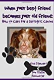 When Your Best Friend Becomes Your Old Friend: How To Care For Your Geriatric Canine