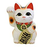 開運 招福 招き猫(常滑焼) 7寸右 白 TB7509