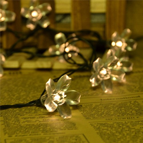 Best Quality Solar String Lights : Jobelle Solar Fairy Blossom Lights ***#1 Top Rated Solar Fairy String Lights on Amazon ...