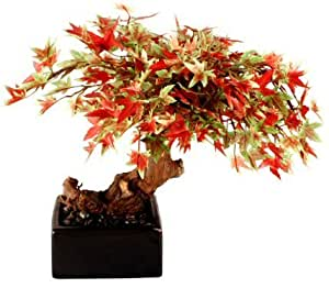 Bonsai Boy's Artificial Japanese Maple Bonsai Tree - Small