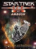 Star Trek: Ambush (Star Trek: Starfleet Corps of Engineers Book 11)