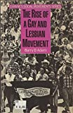 The Rise of a Gay and Lesbian Movement (Social Movements Past & Present)