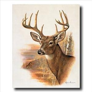 Whitetail Buck Deer Antler Rack And Doe Animal Wildlife Wall Picture