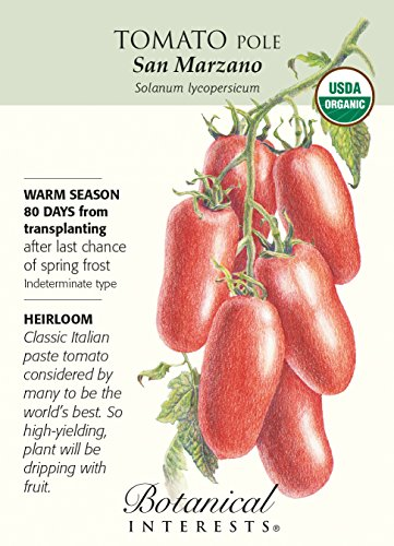 San Marzano Pole Tomato -30 Seeds - Certified Organic (Bush Tomatoes compare prices)