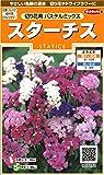 サカタのタネ 実咲花7250 スターチス 切り花用パステルミックス 10袋セット