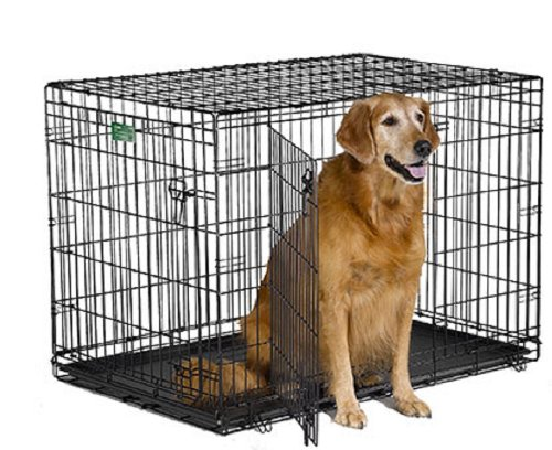 Midwest iCrate Double-Door Folding Metal Dog Crate, 42 Inches by 28 Inches by 30 Inches on sale
