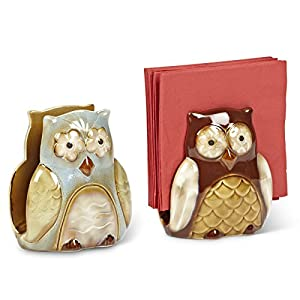 Owl Ceramic Kitchen Napkin Sponge Holder