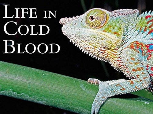 Attenborough: Life In Cold Blood