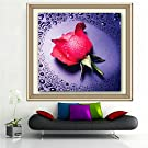 CBSKY® 5D DIY Cross-stitched Embroidery , Crystal Diamond Painting, Rhinestone Painting Full Embroidery , Needlecrafts Paintworks Paint By Number Kits Pasted Gift (Red Rose)