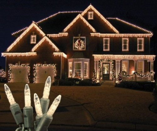 70 Light Led Icicle Light Color: Warm White / Green