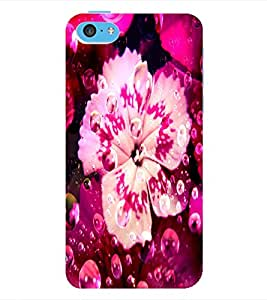 ColourCraft Flower Back Case Cover for APPLE IPHONE 5C