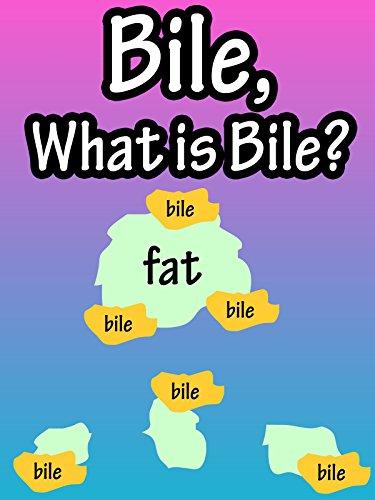 Bile, What Is Bile?