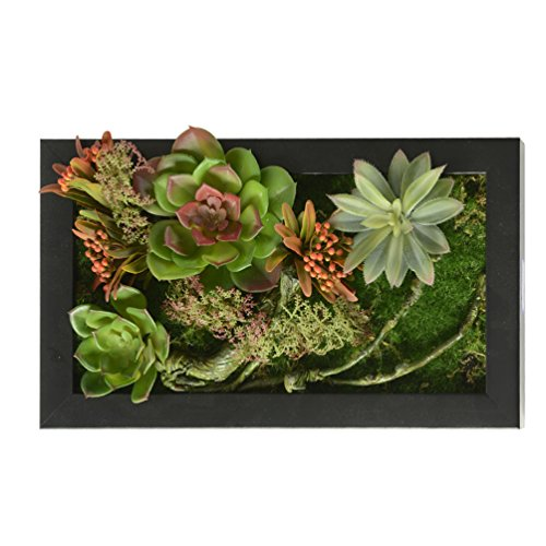 3D House Adornment Metope Wall Decoration Artificial Flowers Succulent plants Vine wedding Decorations living Room Black Frame 7.8 in * 13.78 in