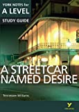 img - for A Streetcar Named Desire: York Notes for A-Level 2015 (York Notes Advanced) book / textbook / text book